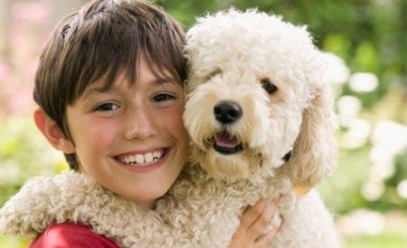 Las razas de perro que mejor conviven con los ni os consejos para tu mascota - Animales con personas apareandose ...